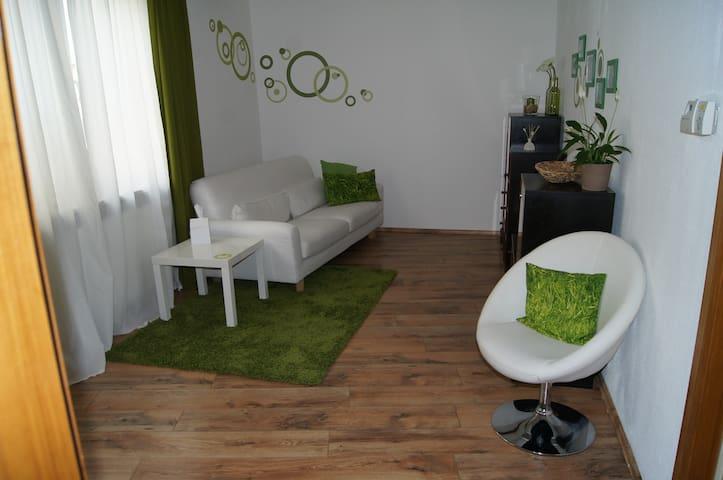 Große Ferienwohnung im Stadtzentrum - Bad Urach - Apartment