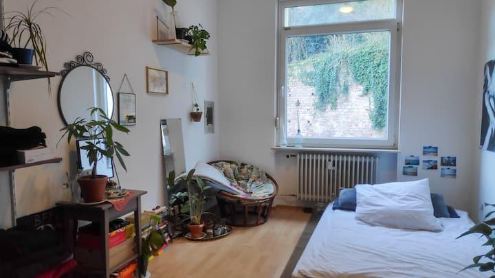 Heidelberg Altstadt Zimmer
