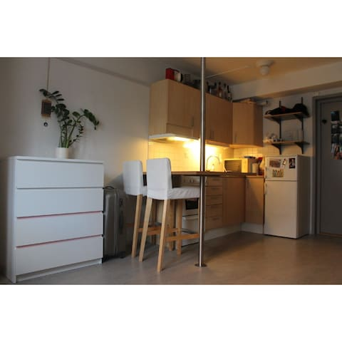 1 room apartment, 28 kvm