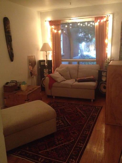 Le salon chaleureux avec une vue donnant la magnifique rue gauthier. On peut y voir le Parc Lafontaine au loin!