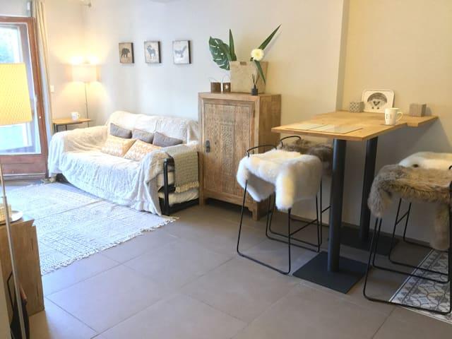 Verbier Chaleureux appartement entièrement rénové!