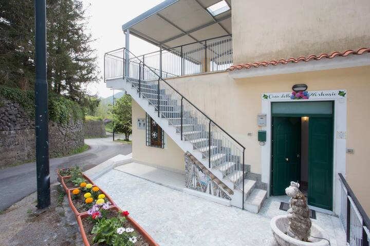 CASA DELLE HORTENSIE - Tramonti - Apartamento