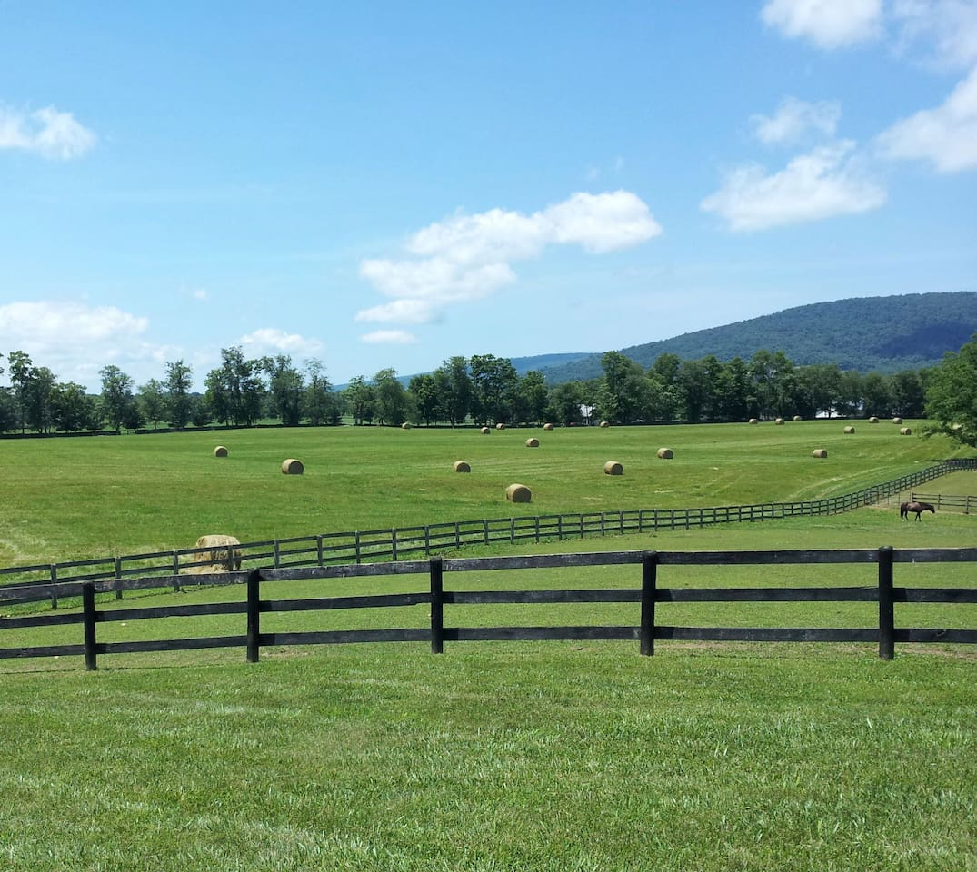 Come enjoy our wide open spaces and beautiful scenery.