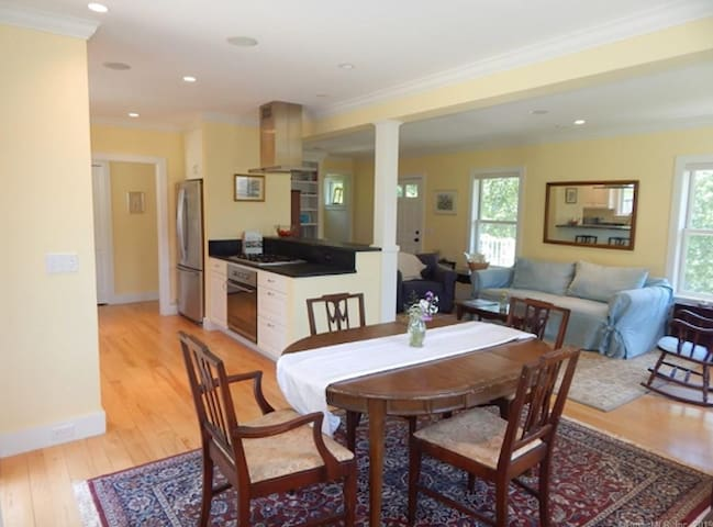 Shared common area:  gourmet kitchen, living room, dining room.