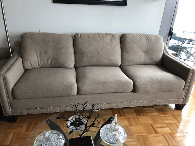 One Sofa Bed  for one person for $40 dollars