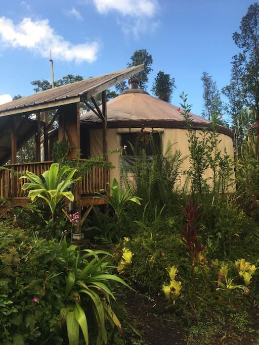 Chic eco yurt home edible gardens yurts for rent in p hoa hawaii united states for Houses for rent in hawaiian gardens