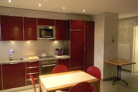 La Rippe/Nyon Studio tout confort  - La Rippe - 公寓