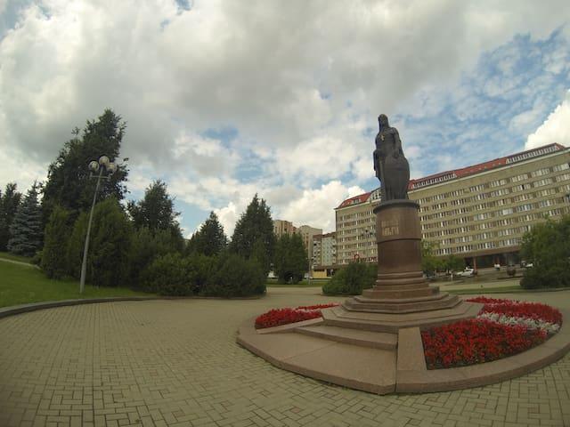 2-х комнатная квартира. Рижский парк - Pskov - Pis