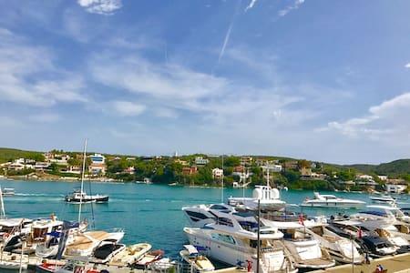 Spectacular Frontside Mahon Port
