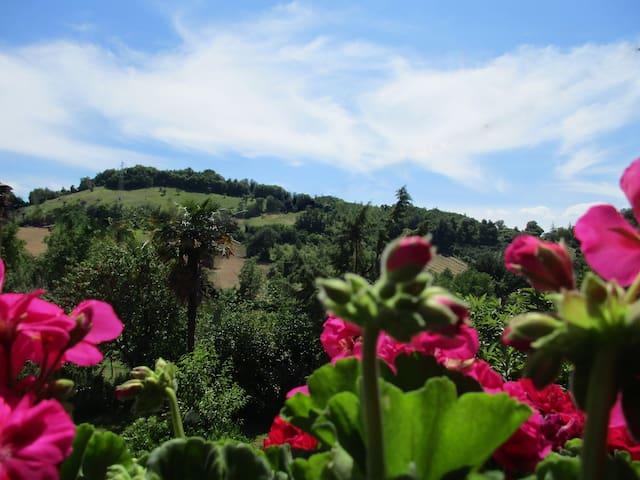 B&B Carboni, natura e relax - Penna San Giovanni - Pousada