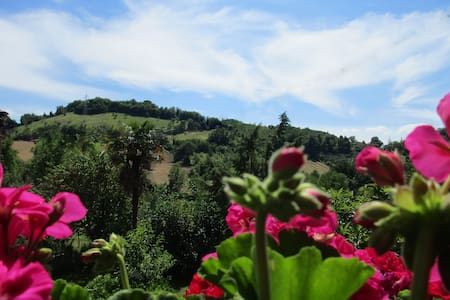 B&B Carboni, natura e relax - Penna San Giovanni - Bed & Breakfast