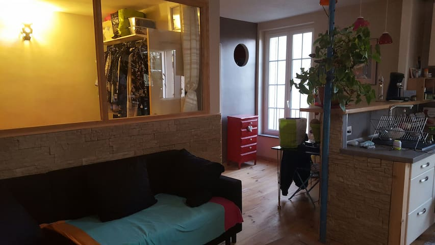 Appartement cosy cathédrale - Albi - Appartement
