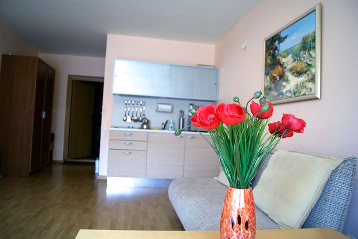 Apartment 80m from the sea beach