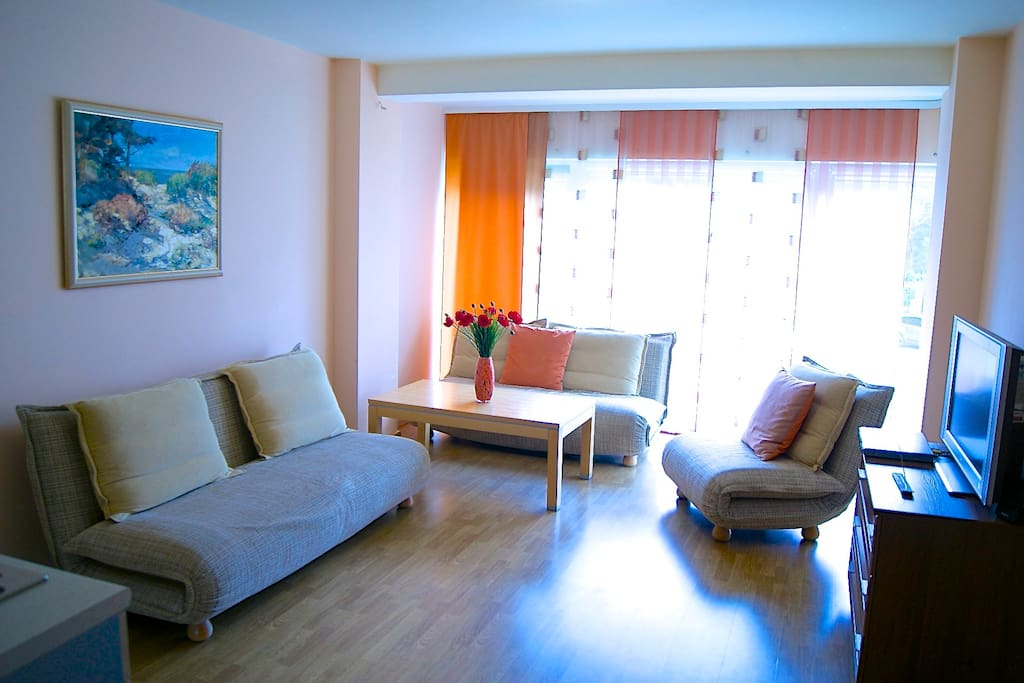 THE LIVING SPACE WITH TV