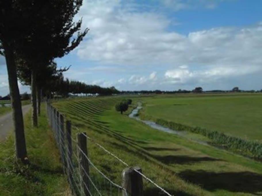 prachtige polder de Beemster