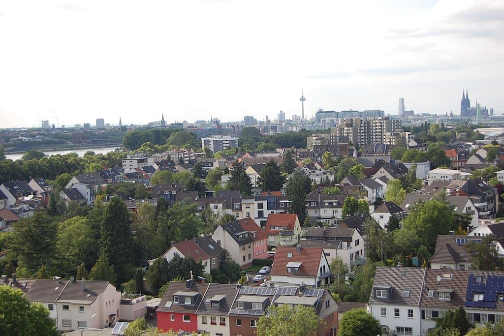 Blick auf Köln