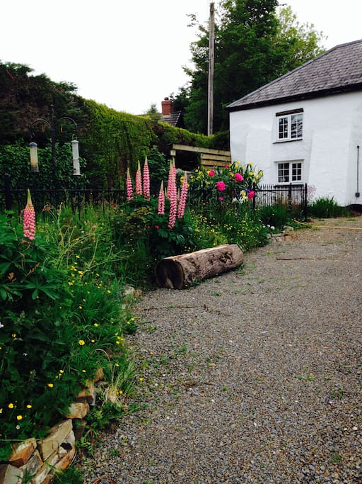 Bed Houses Rent Bude Cornwall