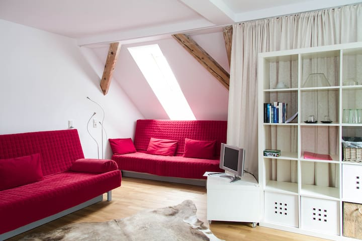 Cosy flat in the centre of Bregenz - Bregenz - Leilighet