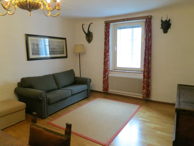 Charming appartment in city center - Salzburg - Lägenhet