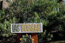 Las Bossas sign infront of the acacia bushes