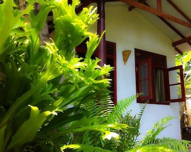 Dreamtime Cabana - Hikkaduwa - Villa