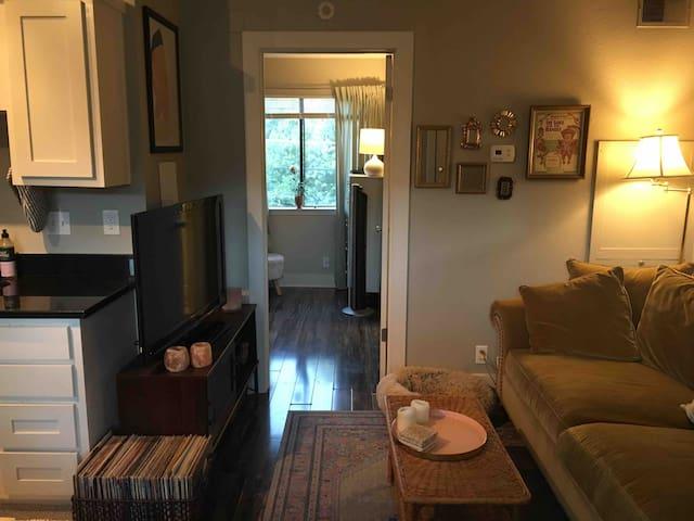 Super Cozy and Cute South Austin Apartment