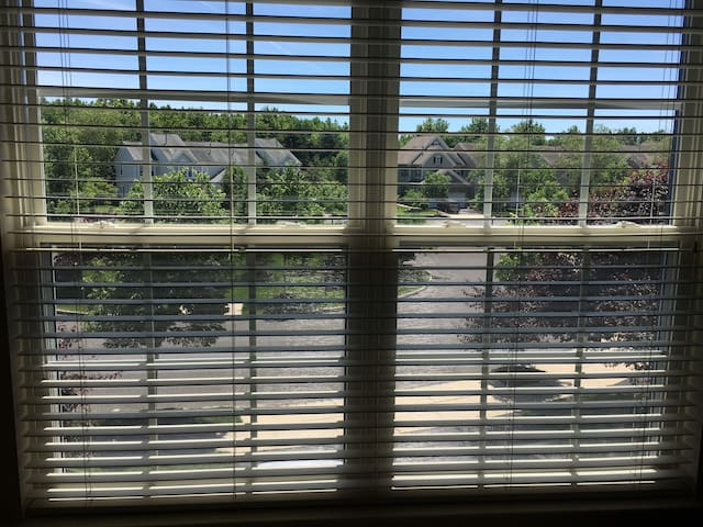 Room in a townhouse with excellent view/amenities.