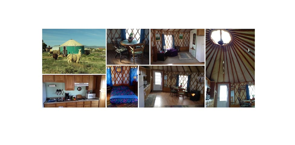 Enchanted yurt with amazing views and llamas too - Santa Fe - Yurt