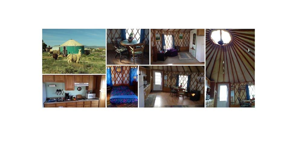 Enchanted yurt with amazing views and llamas too