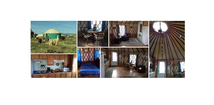 Enchanted yurt with amazing views and llamas too