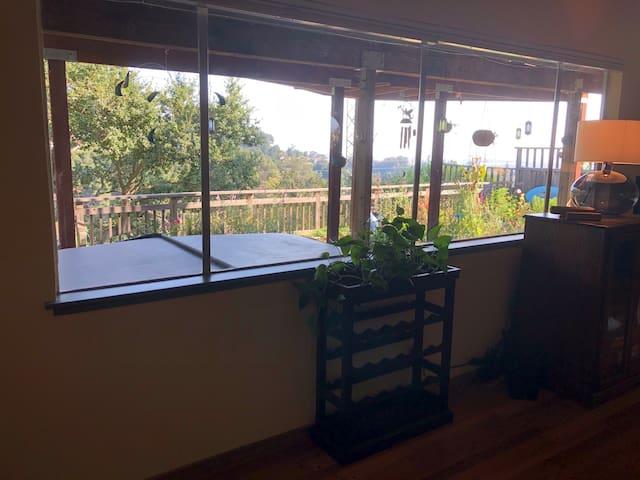 Peaceful Studio in Oakland Hills/ Montclair