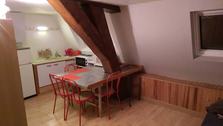 Studio cosy Nancy Hyper Centre 20m²