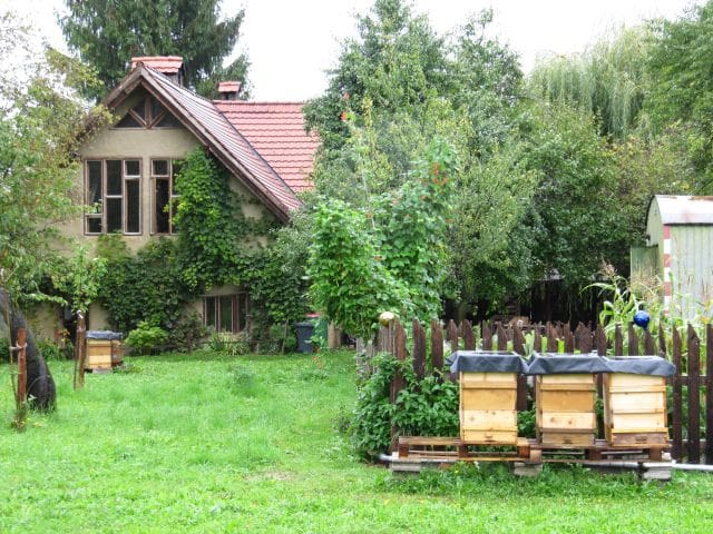 room on a little organic farm - Eberndorf - Talo