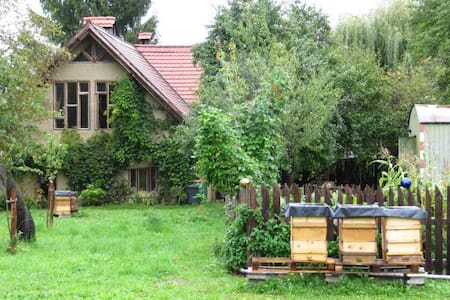 room on a little organic farm - Eberndorf - 단독주택