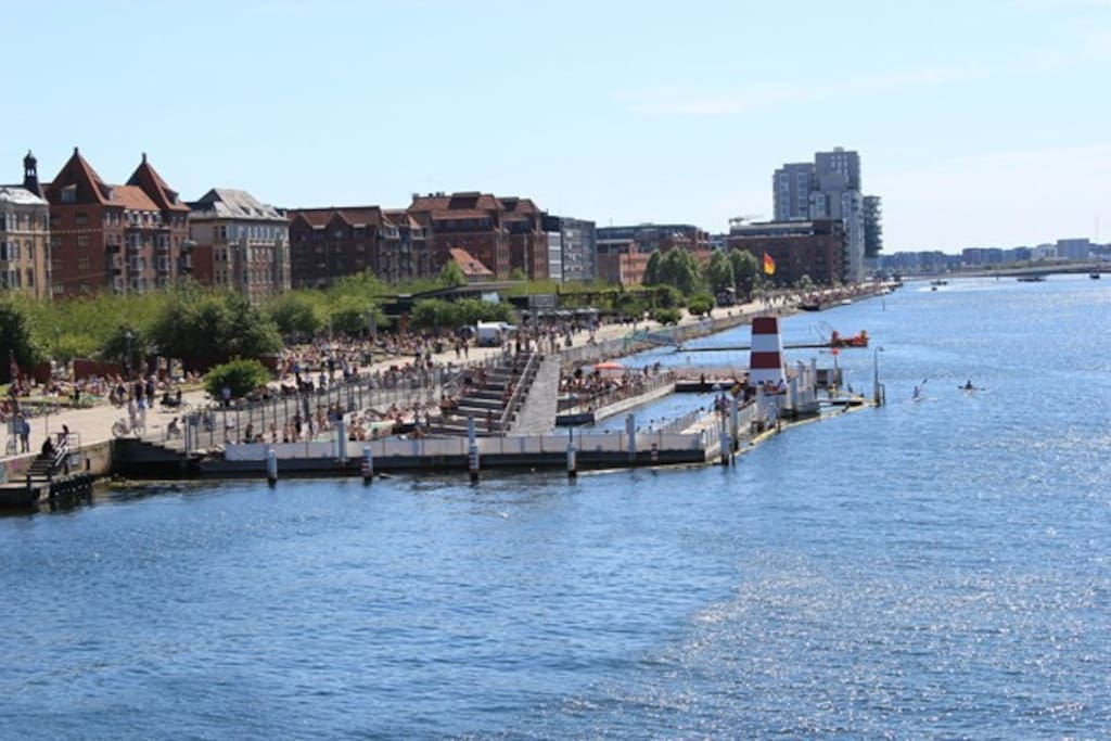 Harbour Bath at Islands Brygge.