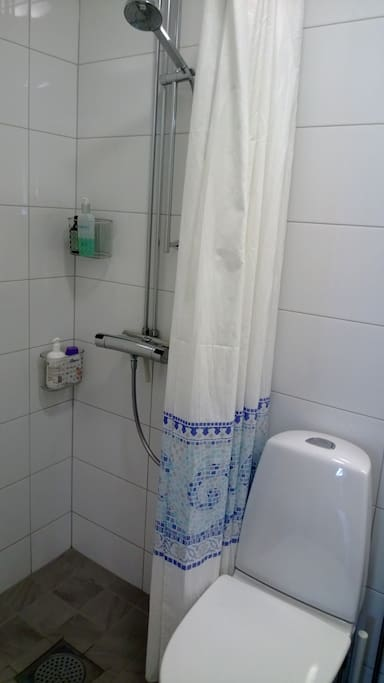Private spacious bathroom with toilet and shower.