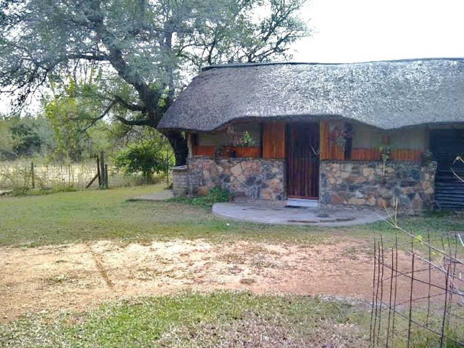True African Magic  -       FRONT VIEW