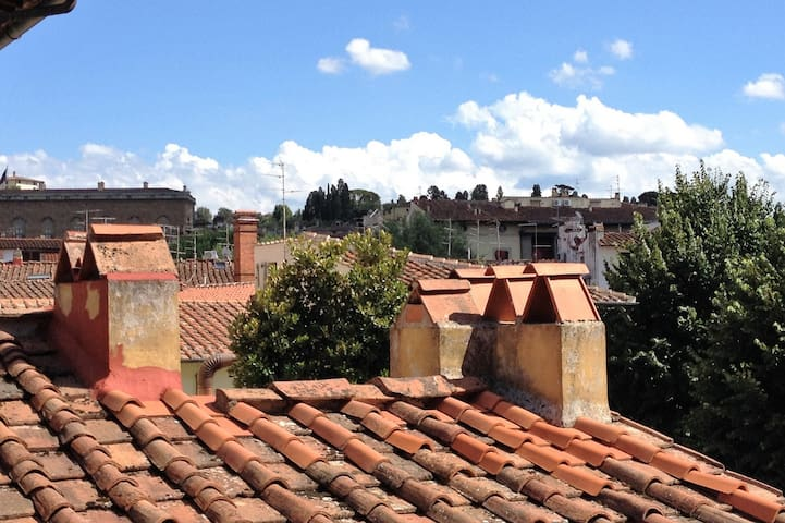 View of Pitti Palace and the neighborhood's roof tops from the apartment