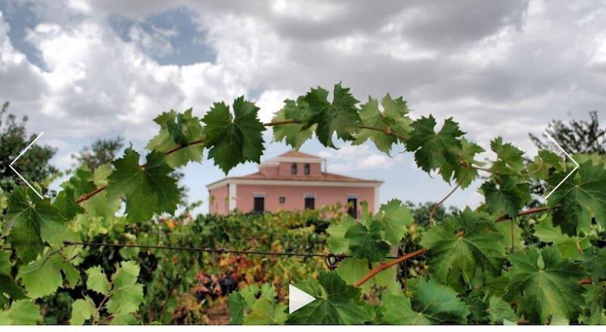 Historic Villa D'Aringione - Near Piazza Amerina
