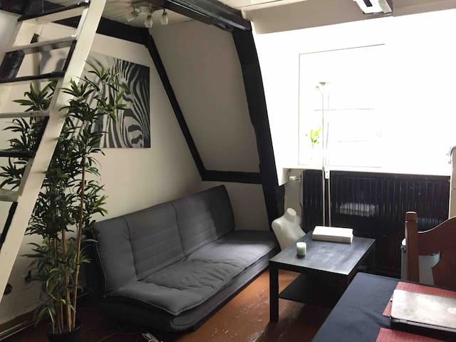 Central & Cozy studio in Amsterdam