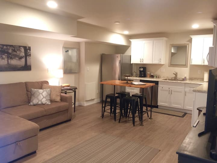 Extended Stay Modern Apartment in the County