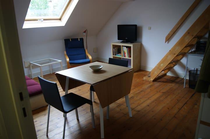 Appartement de 40 m2 sous les toits à Ixelles - Ixelles - Huoneisto