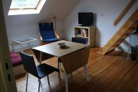 Appartement de 40 m2 sous les toits à Ixelles - Ixelles - Wohnung