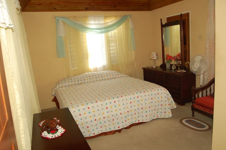 Charming Partial Ocean View Room. - Port Antonio - House