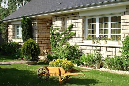 Chambre confortable / grande maison - Chilly-Mazarin - 단독주택