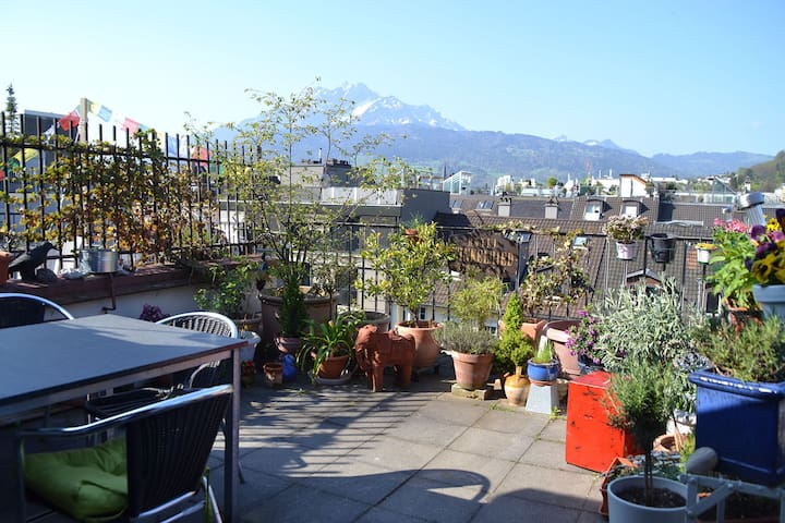 Above the rooftops of Lucerne - Lucerne - Apartemen