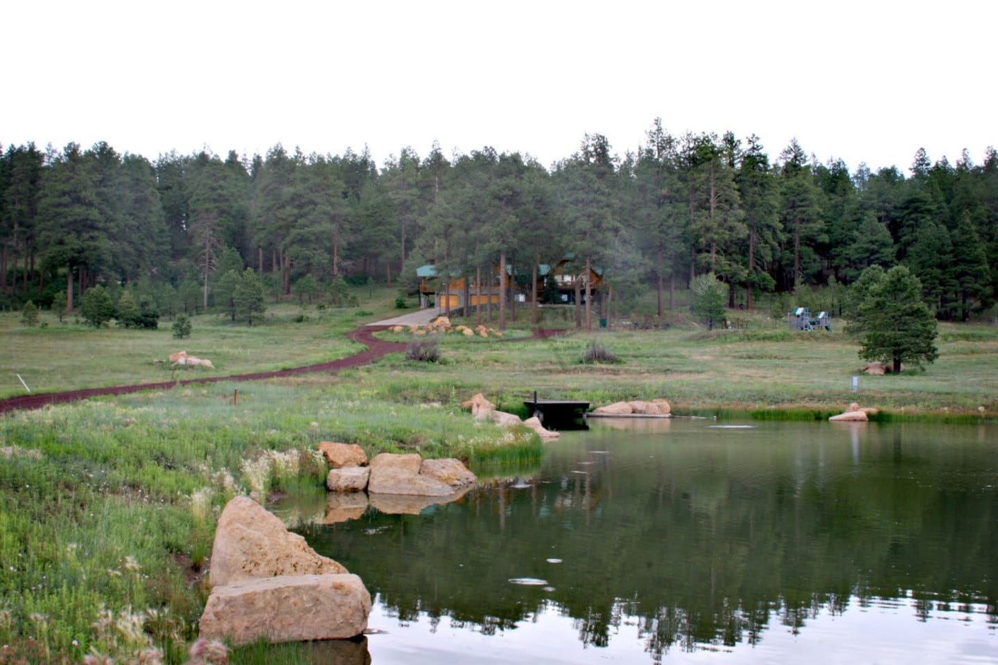 View from pond