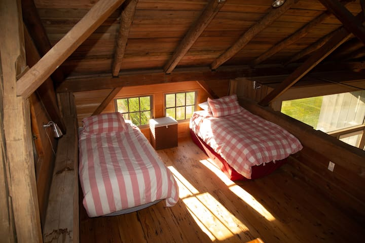 LOFT in main living space, 2 twin beds