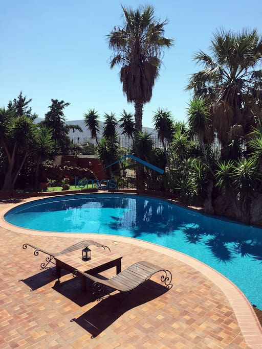 The swimming pool and sunbathing area