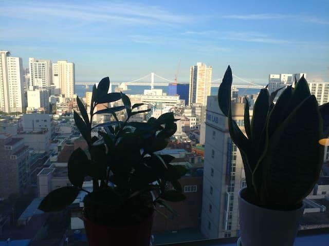 New★Gwangan ocean view cozy★5m Metro/10m beach